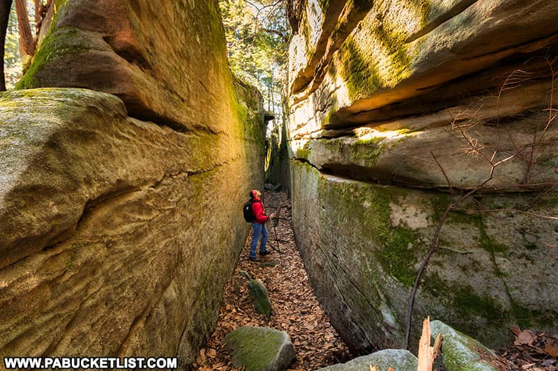 The author in one of the canyons formed by massive rock formations along the Fred Woods Trail.