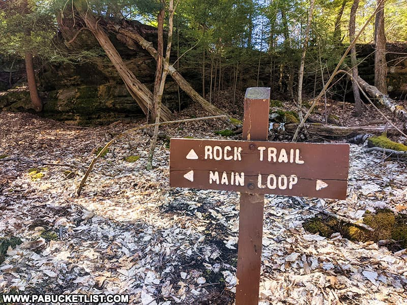 The Rock Trail spur of the Fred Woods Trail.