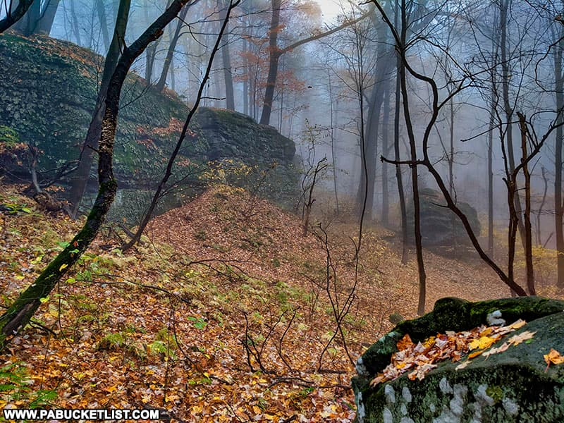 Foggy morning at Jumonville Glen in Fayette County Pennsylvania.