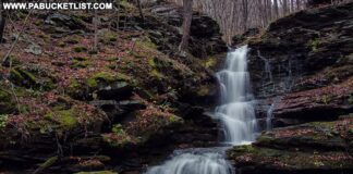 Nickle Run Falls in Tioga County PA