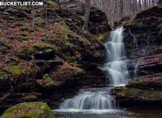 Nickle Run Falls in Tioga County PA