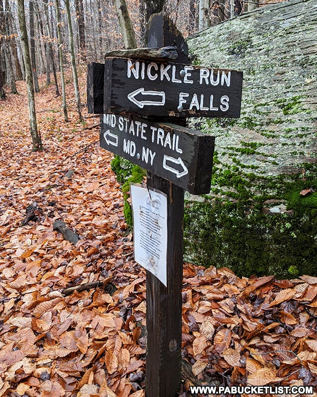 Intersection of the Mid State Trail and the Nickle Run Spur Trail in Tioga County Pennsylvania.