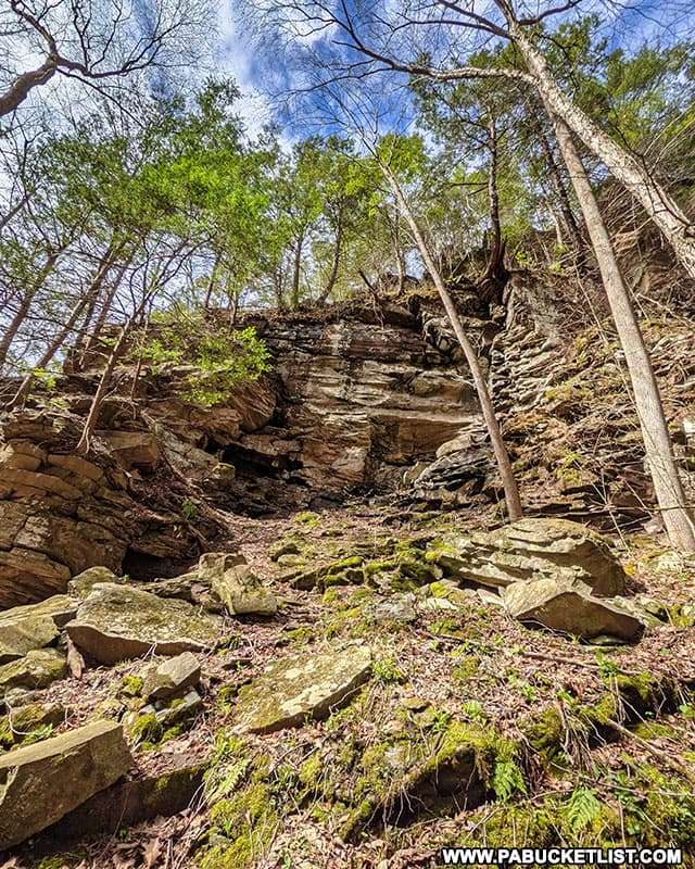 Cliffs above Pine Island Run Falls in the Tioga State Forest.