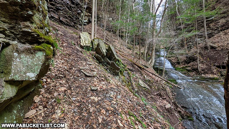 Trail leading to the upper tiers of Pine Island Run Falls in the Tioga State Forest,