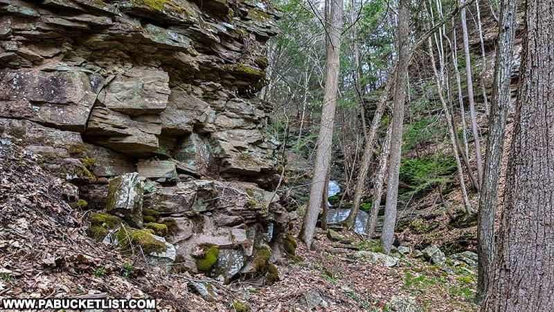 Pine Island Run Falls Trail near the Pine CReek Rail Trail.