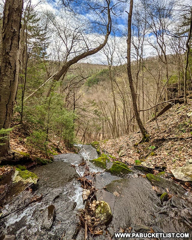 View from the top of Benjamin Hollow Falls in Tioga County PA