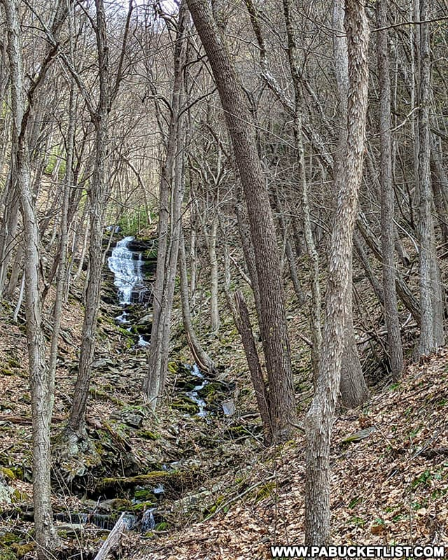 Benjamin Hollow Falls as viewed from the Pine Creek Rail Trail in Tioga County.