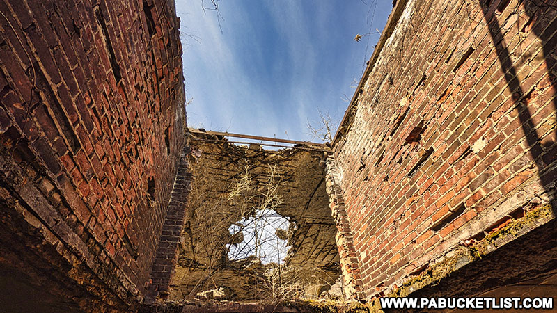 Looking up through the missing roof at the abandoned Bayless Paper Mill.
