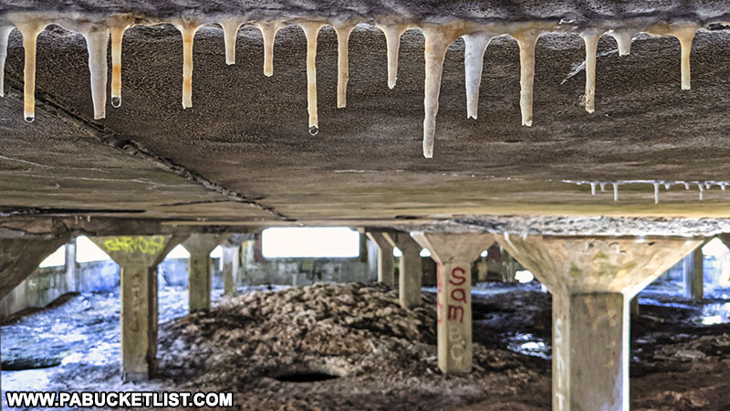 Stalactites forming on the ceilings inside the abandoned Bayless Paper Mill.
