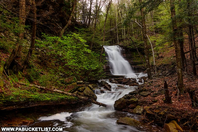 Downstream view of Barclay Falls on State Game Lands 36 in Bradford County Pennsylvania.