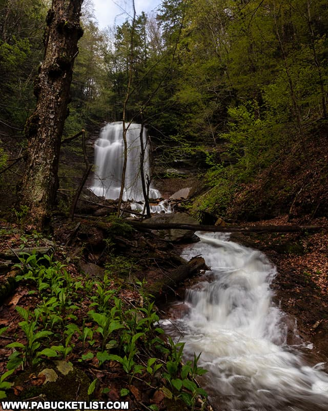 Approaching the 70 foot-tall Bradford Falls on State Game Lands 36.