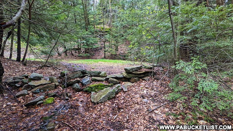 Stone wall marking the northern end of the Bradford Falls Trail.