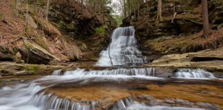 Downstream view of East Branch Falls in the Loyalsock State Forest.