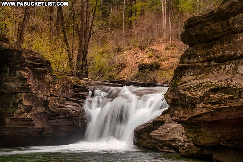Stream-level view of Mill Creek Falls in the Loyalsock State Forest.