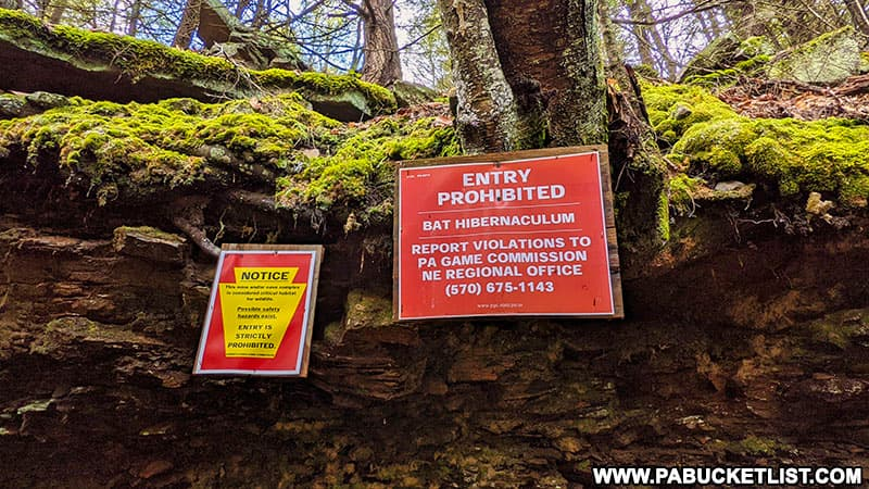 Signs posted near the entrance to the bat cave along Bradford Falls Trail on State Game Lands 36 in Bradford County, PA.