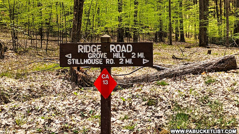Ridge Road in the Cameron County portion of the Elk State Forest.