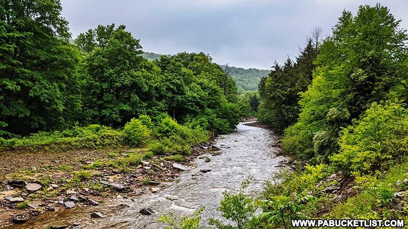 Schrader Creek along the trail to Thomas Run Falls in Bradford County.