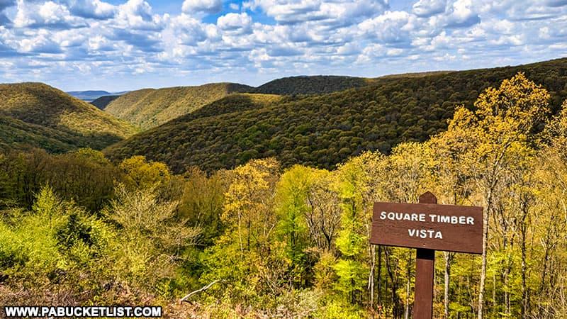 Square Timber Vista along Ridge Road in Cameron County Pennsylvania.