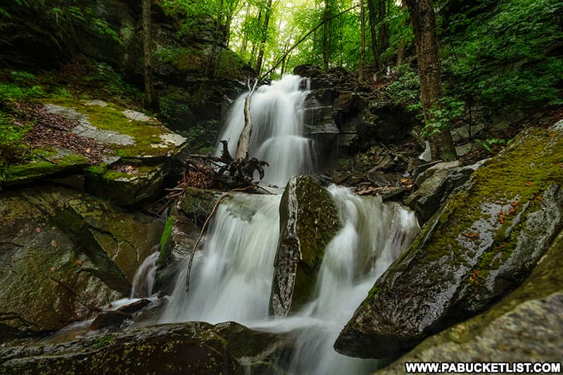 Approaching Thomas Run Falls on State Game Lands 12 in Bradford County PA