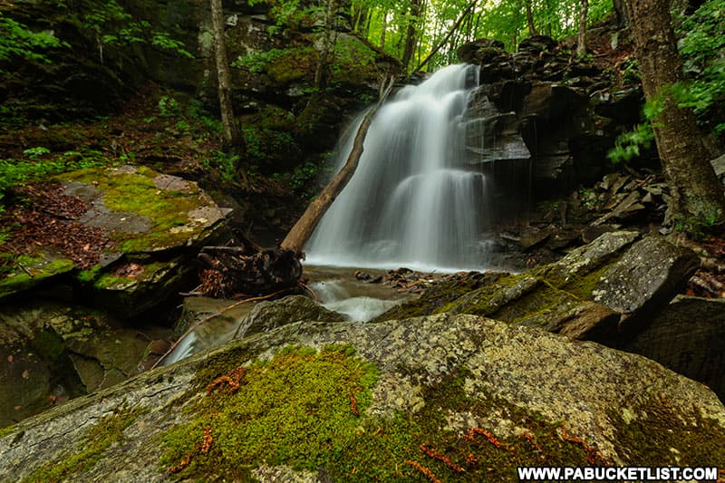Thomas Run Falls surrounded by a mossy gorge on State Game Lands 12.