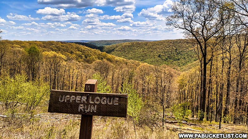 Upper Logue Run Vista along Ridge Road in the Elk State Forest.