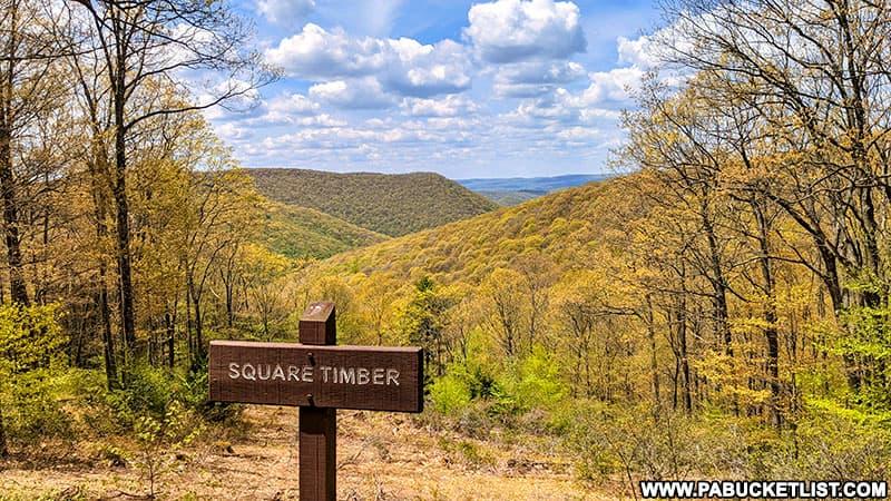 The upper Square Timber Vista along Ridge Road in Cameron County Pennsylvania.