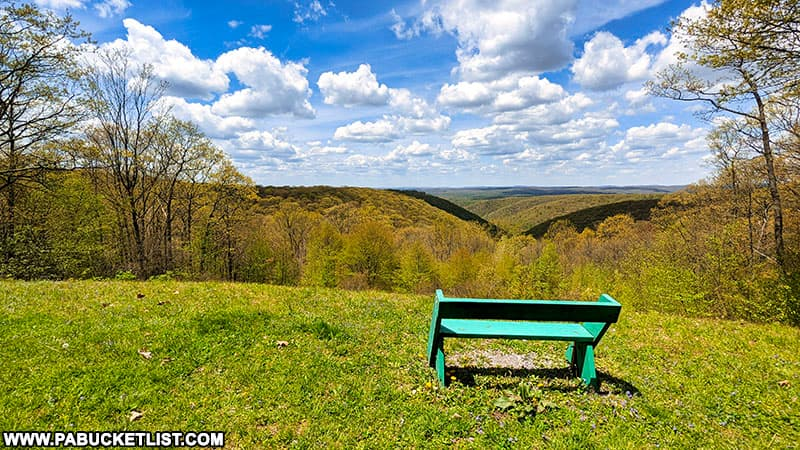 Whitehead Vista in early May in the Elk State Forest.