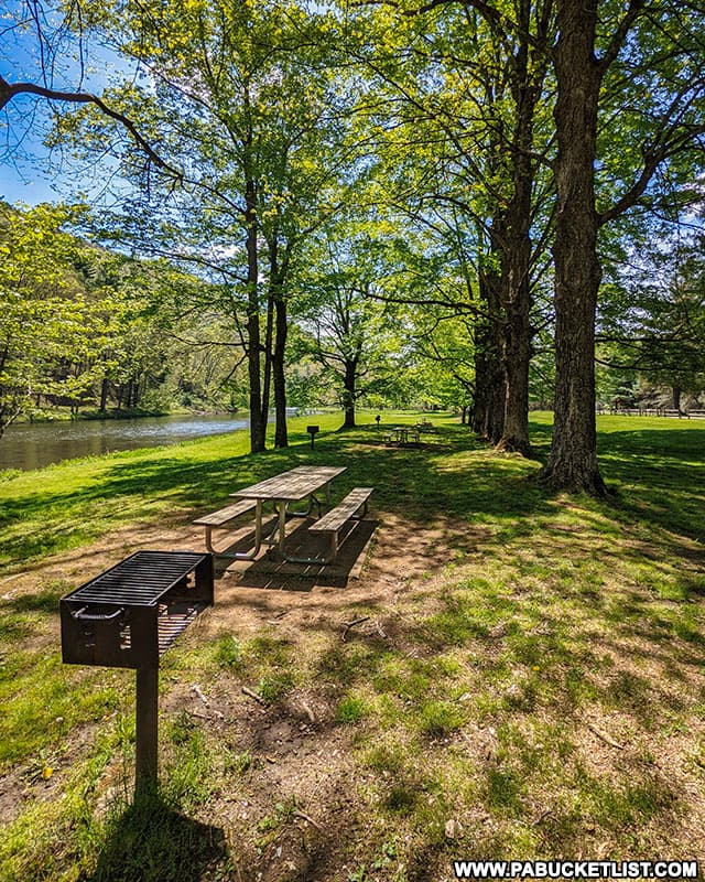 40 Maples Day Use Area at Sinnemahoning State Park.