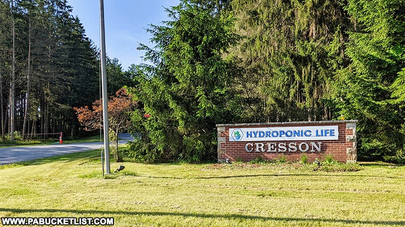 Hydroponic Life sign reflecting the name of the current tenants of the abandoned Cresson State Prison.