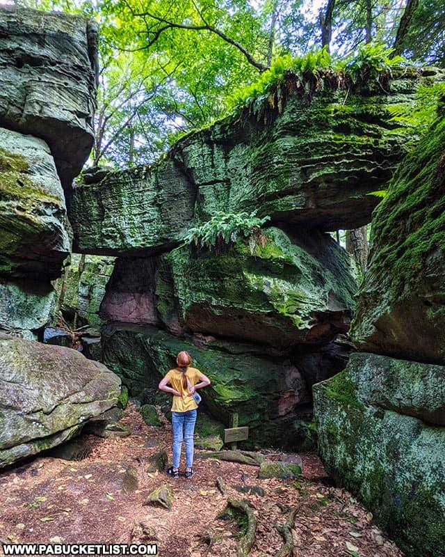 Taking in the scene at Bilger's Rocks in Clearfield County, Pennsylvania.