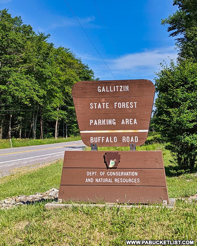 Buffalo Road turn off of Route 56 in the Gallitzin State Forest.