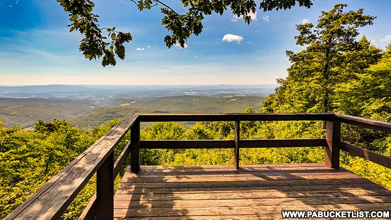 How to find County Line Vista in the Gallitzin State Forest.