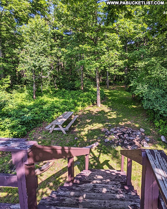 Platform steps at the County Line Vista in the Gallitzin State Forest.
