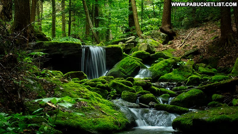 Mill Creek Falls surrounded by mossy rocks on State Game Lands 42 in Westmoreland County.