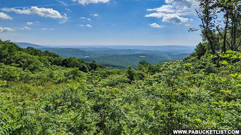 Skyline Drive Vista along the Somerset-Bedford county line in the Gallitzin State Forest.