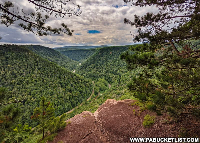 A summer afternoon at Barbour Rock Overlook in the Pine Creek Gorge Natural Area.