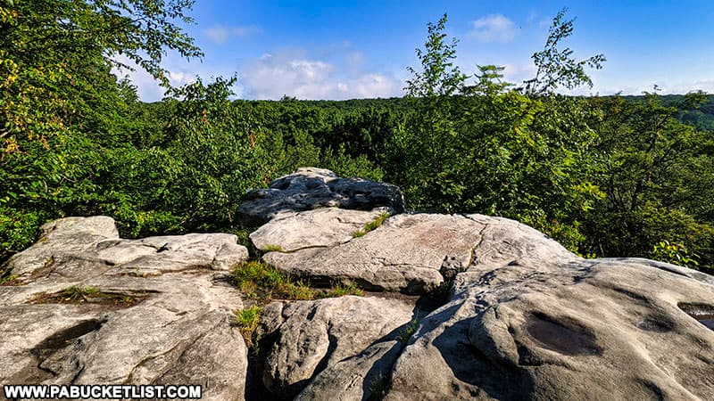 Beam Rocks on a summer morning in the PA Laurel Highlands.