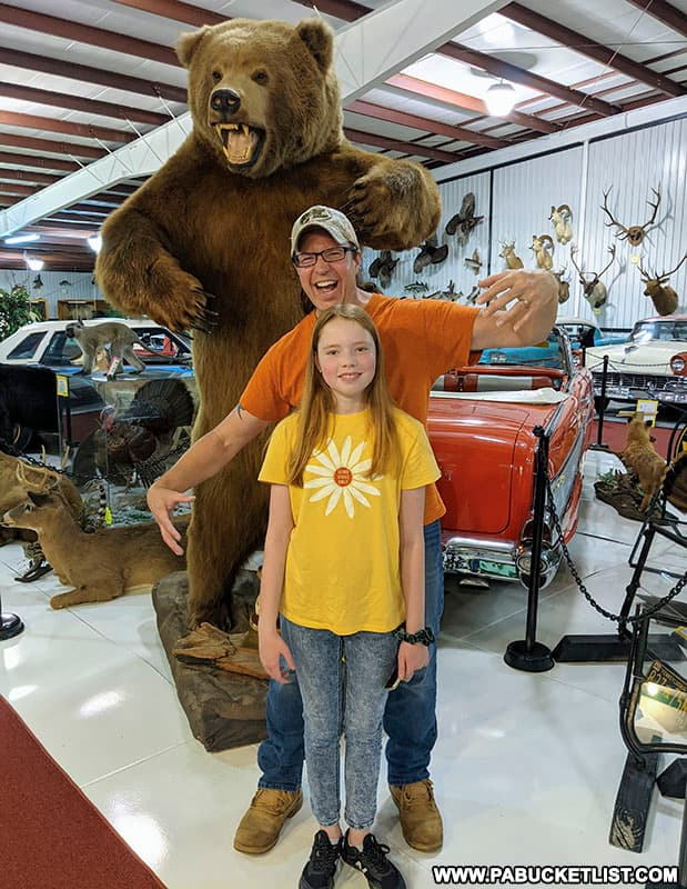 A grizzly bear photo-op at the Grice Museum in Clearfield.
