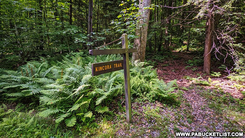 The Kincora Trail at Kooser State Park.