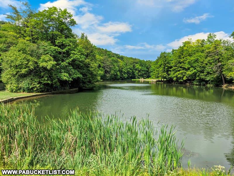 Summer at Kooser Lake in the PA Laurel Highlands.