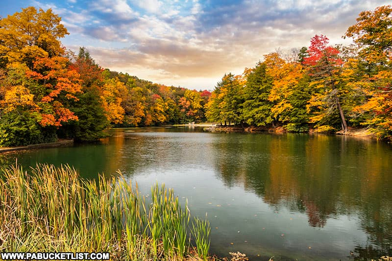 Fall foliage at Kooser State Park in Somerset County PA