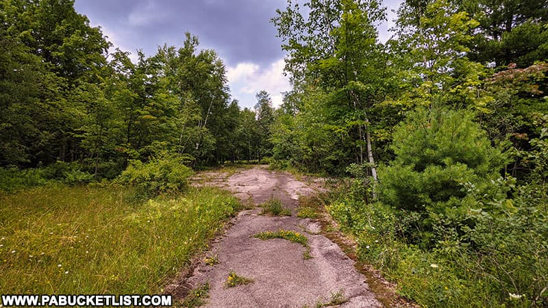 The asphalt pad around one of the abandoned nuclear jet engine testing bunkers in the Quehanna Wild Area.