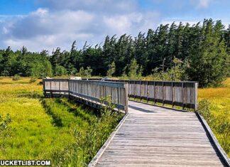 How to find Spruce Flats Bog in the Laurel Highlands region of Pennsylvania.