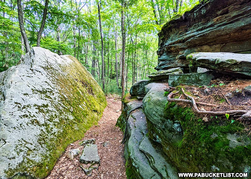 A passageway between the boulders at Beartown Rocks in Jefferson County, PA.