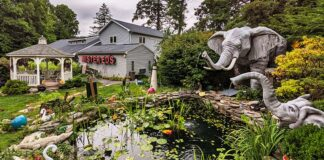 An elephant-themed water garden in front of Mister Ed's Elephant Museum and Candy Emporium.
