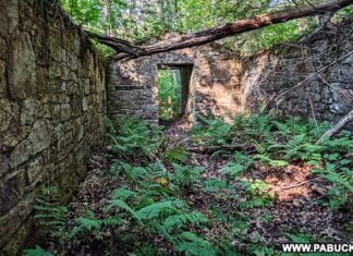 Inside the ruins of the General's quarters at the abandoned Sideling Hill POW Camp in the Buchanan State Forest.
