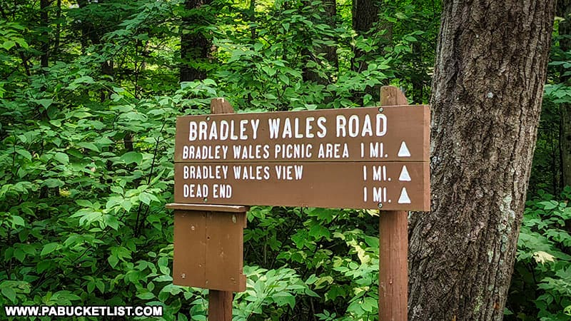 Bradley Wales Road turn-off along West Rim Road south of Wellsboro.