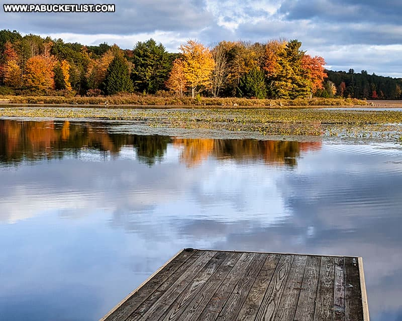 Fall foliage near a boat launch at Black Moshannon State Park.