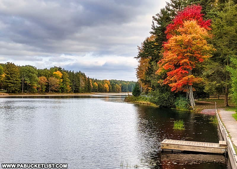 Fall foliage near the boat rental at Black Moshannon State Park.