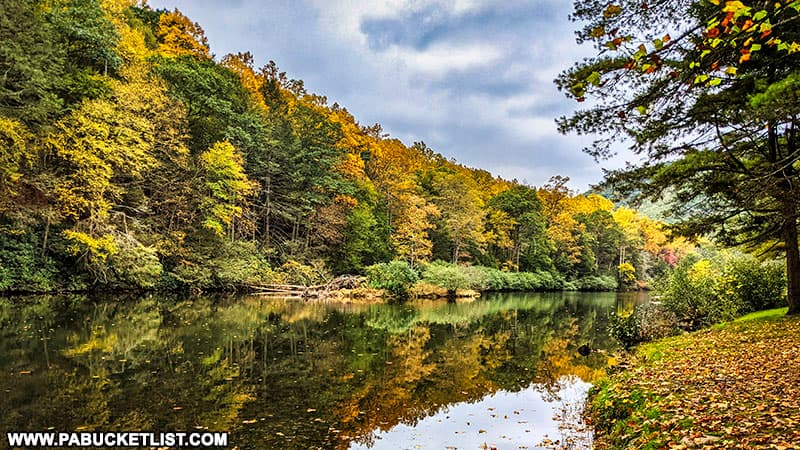 Fall foliage views along Kettle Creek on October 12th, 2021.